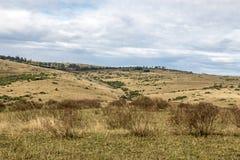 农村干燥冬天植被蓝色多云天空原野大局 免版税图库摄影