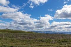农村干燥冬天植被蓝色多云天空原野大局 免版税库存图片