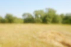 农村抽象的横向 免版税库存图片