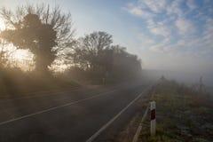 农村有薄雾的路 免版税库存图片