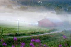 农村有雾的横向 库存图片
