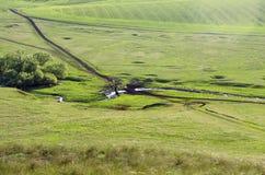 农村横向在春天 在视图之上 免版税库存照片