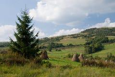 农村横向的山 免版税库存图片