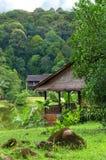 农村沙捞越,婆罗洲横向 免版税图库摄影