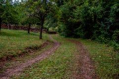 农村泥泞的路 库存照片