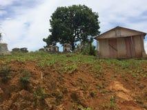 农村海地的公墓 库存图片