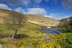 农村爱尔兰爱尔兰横向的摄影 免版税库存图片