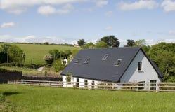 农村爱尔兰的生活 免版税库存照片