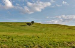 农村牧场地风景 免版税库存照片