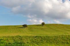 农村牧场地风景 免版税库存图片