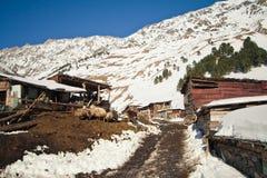 农村生活的山 库存照片