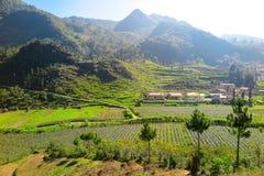 农村生活在河江市,北越南 免版税库存照片