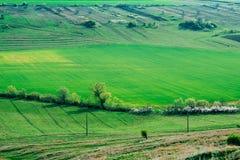 农村的乡下 图库摄影