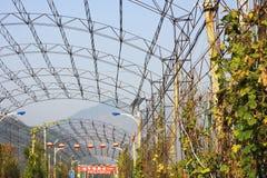 农村的北京 免版税库存照片