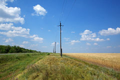 农村的域 免版税库存照片