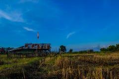 农村的大草原 库存图片