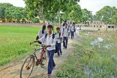 农村的教育 库存照片
