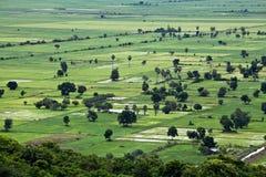 农村的柬埔寨 库存照片
