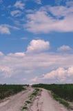农村的横向 土路穿过绿色领域,天空与 免版税图库摄影