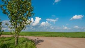 农村的横向 在土路后的农业领域在蓝色多云天空下 免版税图库摄影