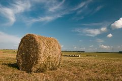 农村的横向 在领域的干草捆在收获以后 库存图片