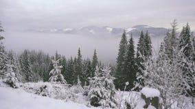 农村的横向 新年好 冻美丽的树 冬天传说 股票录像