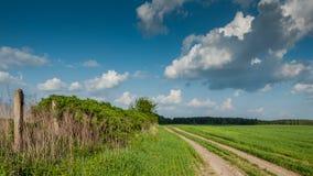 农村的横向 沿灌木的领域土路对木头在蓝色多云天空下 库存图片
