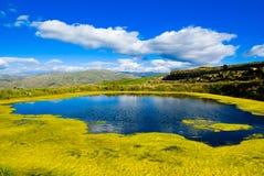 农村的湖 库存图片