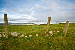农村的爱尔兰 库存图片