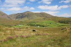 农村的爱尔兰 免版税库存图片