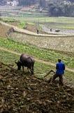 农村的瓷 免版税库存照片