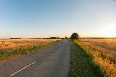 农村的路 蓝色域金hdr图象天空麦子 成熟谷物丰收时间 图库摄影