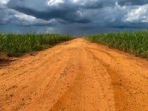 农村的路 免版税库存图片