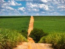 农村的路 图库摄影