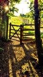 农村的门 库存图片