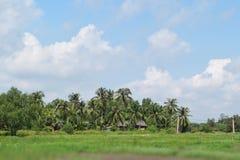 农村看法在越南 免版税库存照片