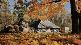 农村秋天的横向 在谷仓附近的秸杆 留下阳光黄色 在行动的射击与电子 股票视频