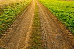 农村老的路 免版税库存照片