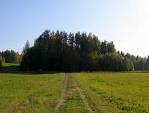 农村自然风景 库存照片