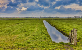 农村荷兰风景 库存照片