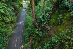 农村路在森林里北泰国 免版税库存照片
