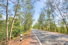 农村路在泰国 库存照片