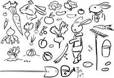 农村集合的乱画-菜和乐趣兔子 皇族释放例证