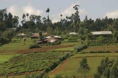 农村非洲的横向 免版税库存照片