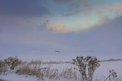 农村风景冬天 在普利亚和巴斯利卡塔之间:与多雪的领域的小山在黎明 在距离乡间别墅控制了b 免版税图库摄影