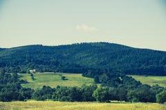 农村风景在乌克兰 免版税库存照片