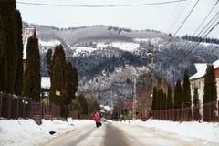 农村风景在冬天,罗马尼亚 图库摄影