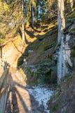 农村风景在冬天 免版税库存照片