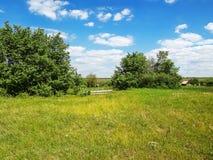 农村风景在的绿色5月在乌克兰-一个清楚的晴天,  免版税库存照片