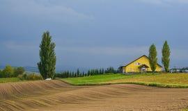 农村风景在Biei,北海道,日本 免版税库存图片